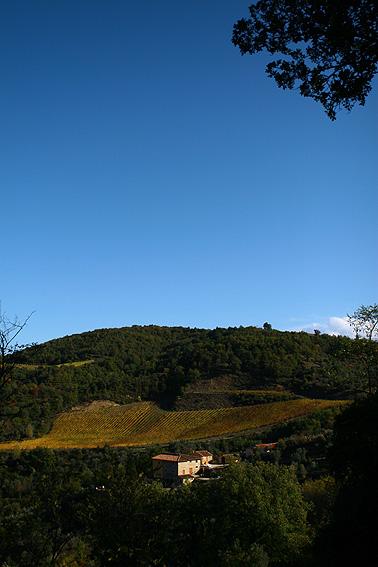 SOWINE_Toscane1