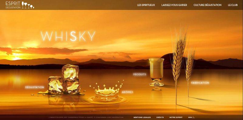 SOWINE_Esprit_Degustation_Whisky