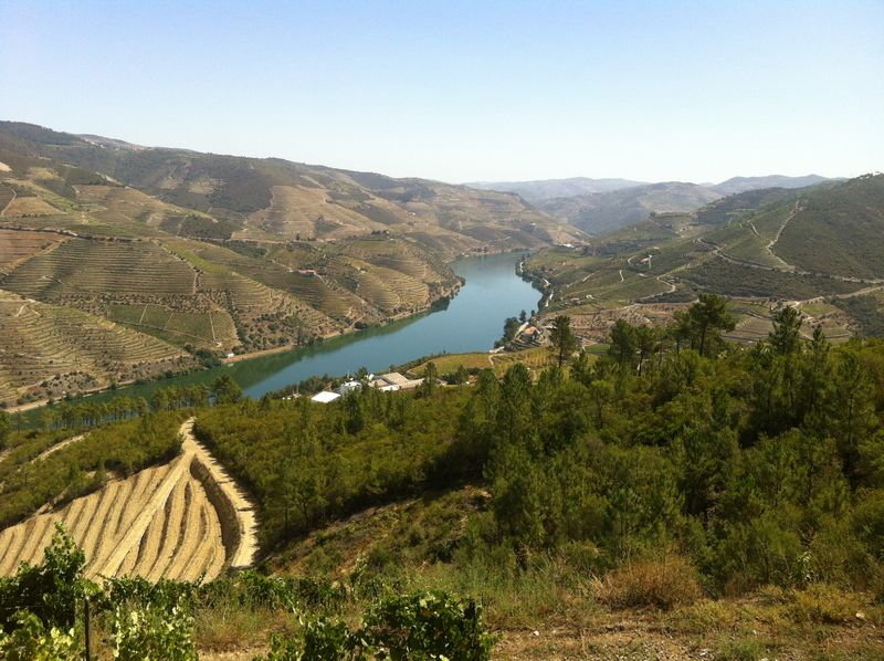 SOWINE_DOURO_2