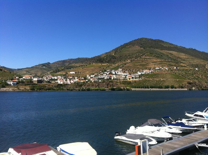 SOWINE_DOURO_6