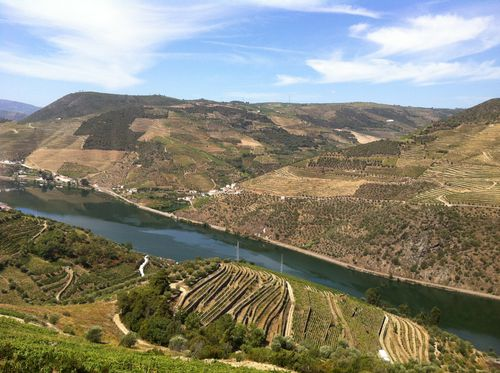 SOWINE_DOURO_4