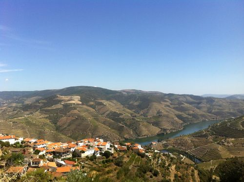 SOWINE_DOURO_1