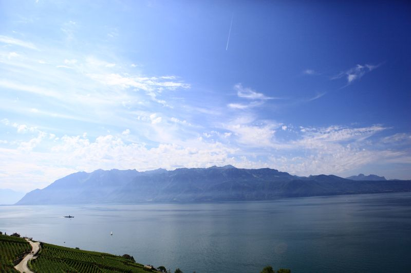 SOWINE_Lavaux_6